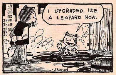 Leopard crackato