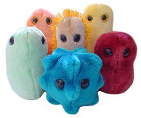 microbi peluche