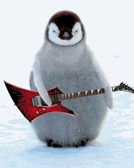 pinguino chitarra