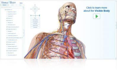 Visible Body screenshot