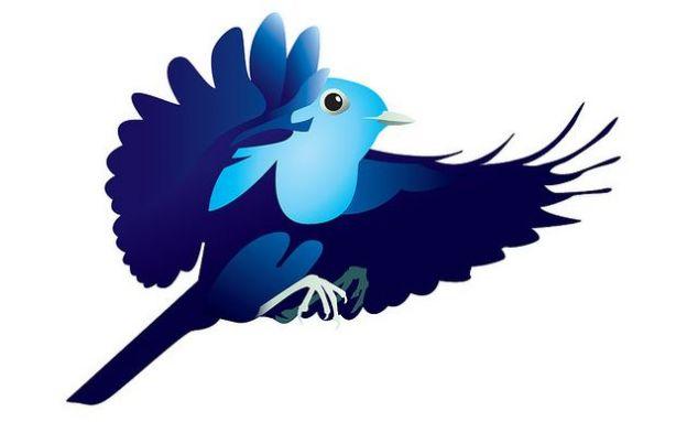 twitter social network strumento informazione