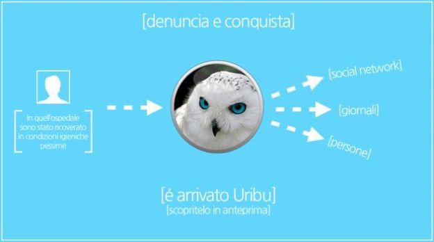 wiki online uribu