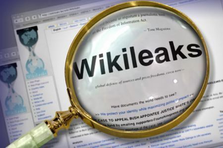 wikileaks dos