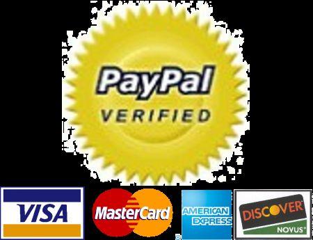 PayPal guida sicurezza