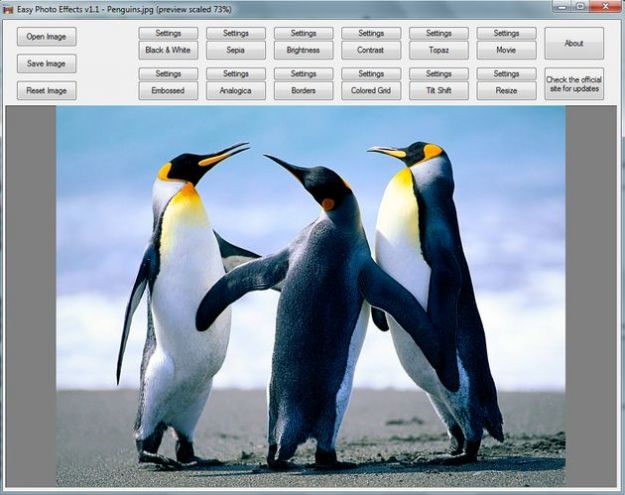 Il fotoritocco gratis con il programma Easy Photo Effects