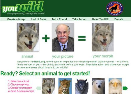 Fotoritocco gratis: trasformare una faccia in quella di un animale con YouWild