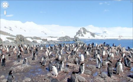 Google Street View sbarca in Antartide