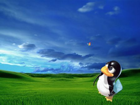 Linux e Windows collaborano