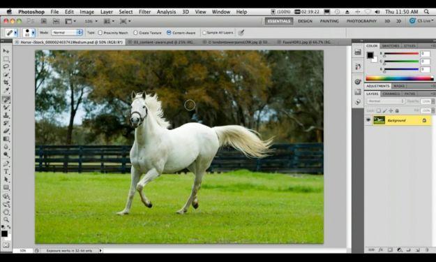 pennelli filtri photoshop