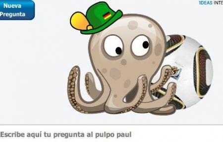 Polpo Paul