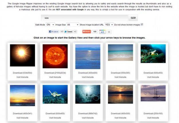 Ricerca di immagini online: Image Ripper, un'alternativa a Google