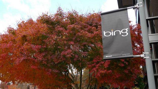 L'andamento della ricerca online nel 2011 su Bing di Microsoft: le parole più cercate
