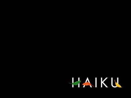 Haiku - boot screen