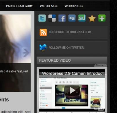 Template per Wordpress professionale: Larisa sidebar