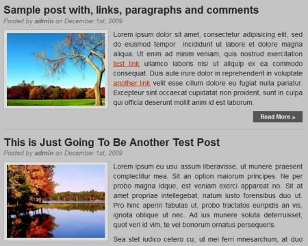 Template per Wordpress professionale: Larisa post
