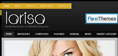 Template per Wordpress professionale: Larisa header