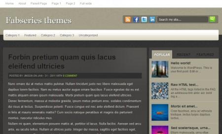 Template Wordpress Elessa: articolo