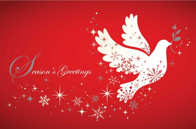 Buon Natale con colomba bianca