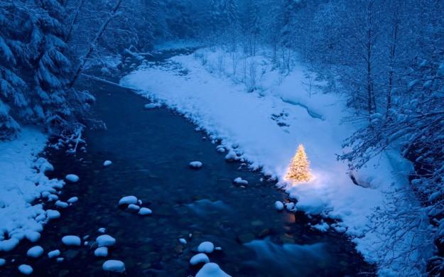 Albero di Natale con luci sulla neve