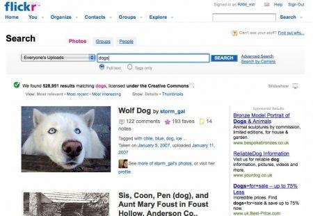Flickr: la ricerca di immagini Creative Commons