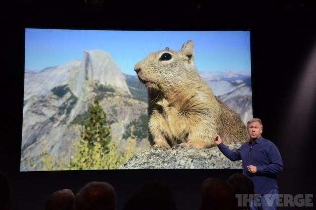 Foto realizzata con iPhone 5S