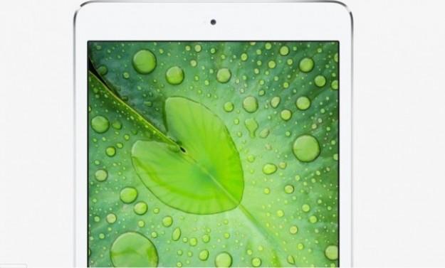 Display dell'iPad Mini