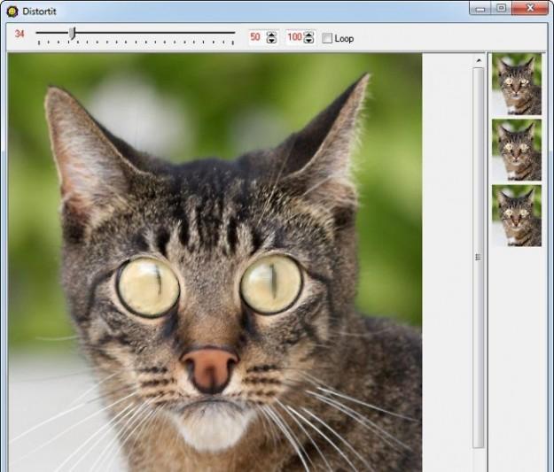 Programmi per deformare foto