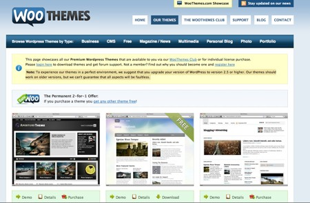 WordPress Temi Premium