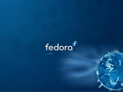 il boot di Fedora 11
