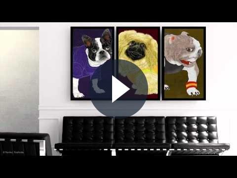 Adobe Flash, OpenFrameworks e Cinder per l'arte interattiva del futuro (non troppo lontano)