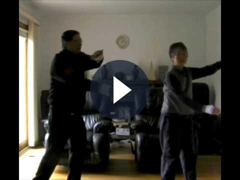 Wii: Nintendo pratica le arti marziali