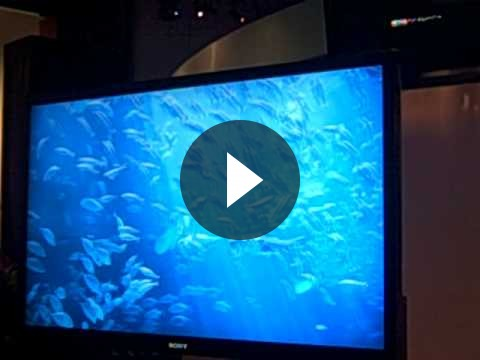 Sony annuncia televisori HD 3D